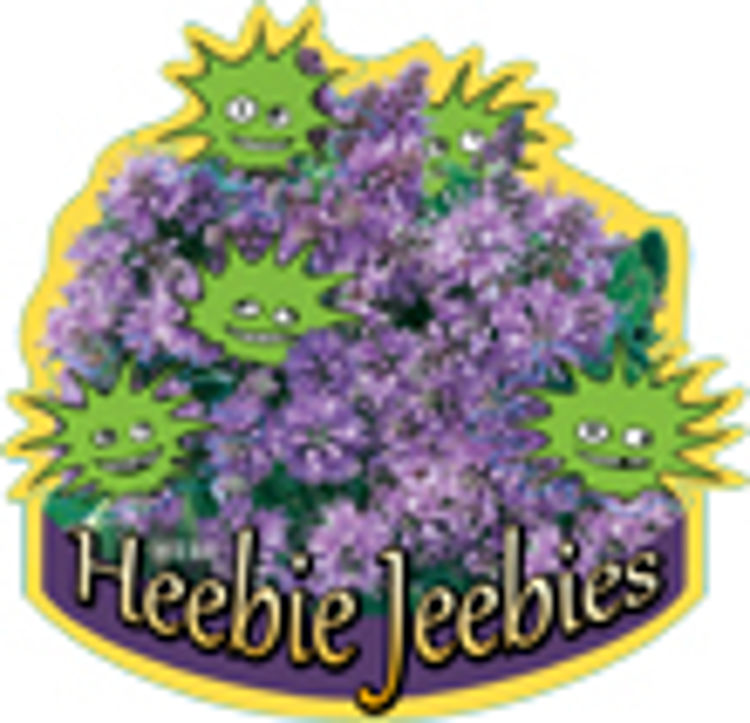 HebhybHJ-5